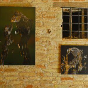 L'uomo misterioso ed il barboncino e sulla destra il Pitbull - The mysterious man and the poodle and on the right the Pitbull